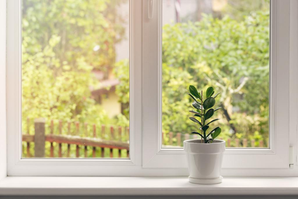 house_window